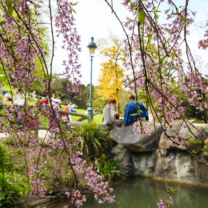 Parks and Gardens in Paris: Montsouris