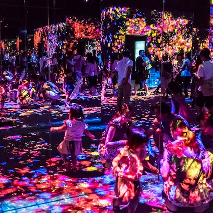TeamLab Borderless: the ultimate digital art museum in Tokyo