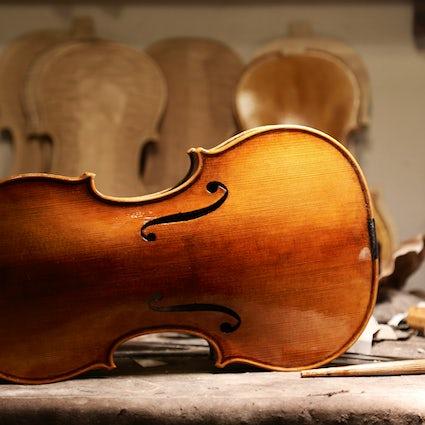 Le Mont Konjuh - Source d'érable bosnien pour les violons Stradivarius