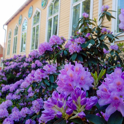 Interesting spots to visit in Naantali