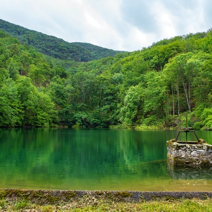 A forest wonderland in Szalajka Valley