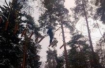 Versuchen Sie es mit Winterseilen im Meshchersky Park bei Moskau.