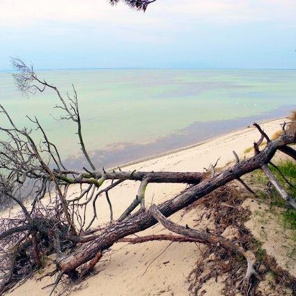 Peninsula Hel: Poland's Kite Surf Paradise