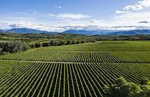 El enoturismo en Tarija, mucho más que el vino