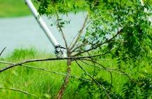 Dzień w Sanktuarium Ptaków Nal Sarovar w Gujarat