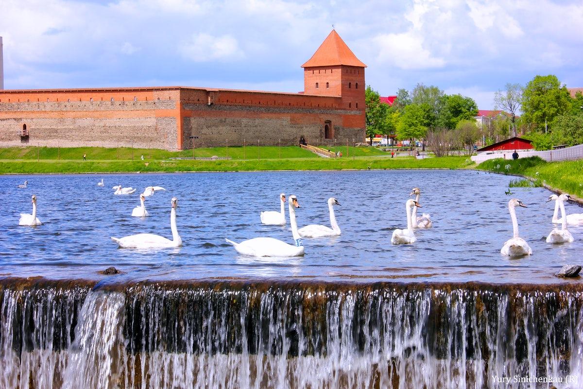 © wikimedia.commons/ Синиченков Юрий