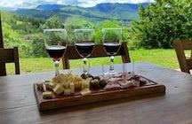 Samaipata valleys wines: aromas born in the heights