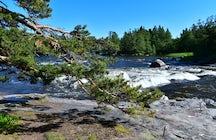 Ecologia, mar e cultura em Kotka, Finlândia