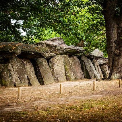 Roche-aux-Fées near Rennes,  a mysterious place built by fairies
