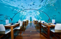 Visit the world's first undersea restaurant at Rangali Island