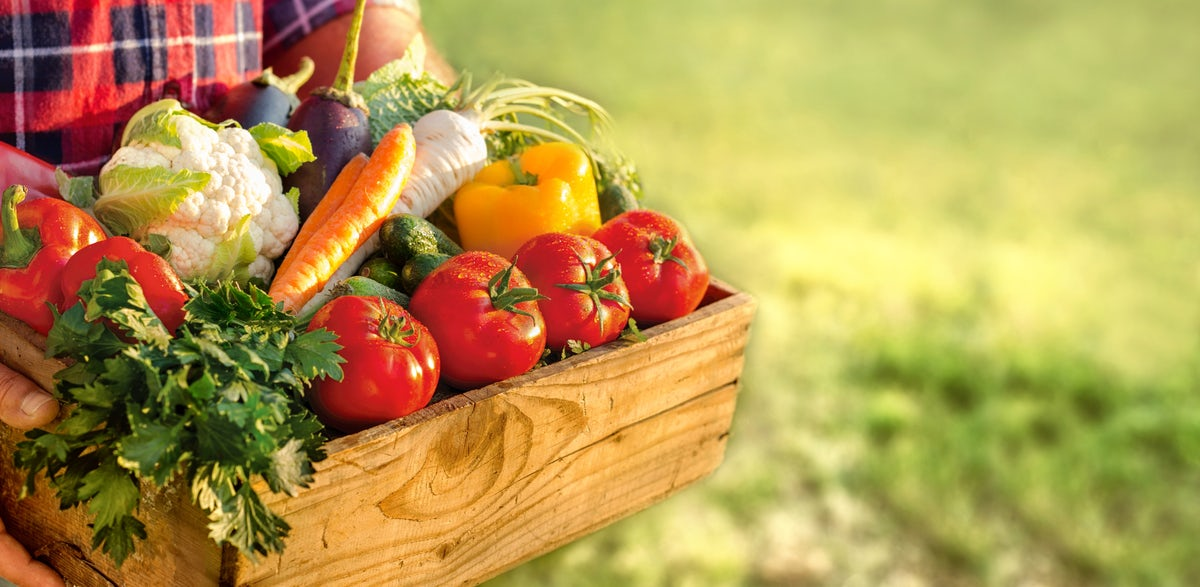 Where to find the organic food in Serbia