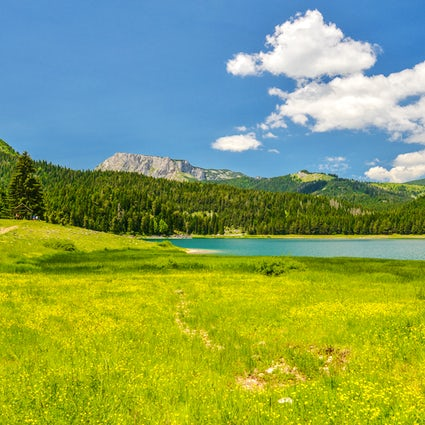 Occhi di montagna del Durmitor: lago nero