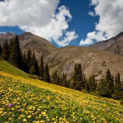 El desfiladero de Chon-Ak-Suuu: una escapada de verano perfecta