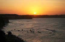 Dolphins, love and sunset in Pipa's best bays