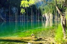 La forêt renversée du lac Kaindy