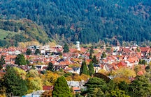 Surrounded by the Black Forest – Freiburg