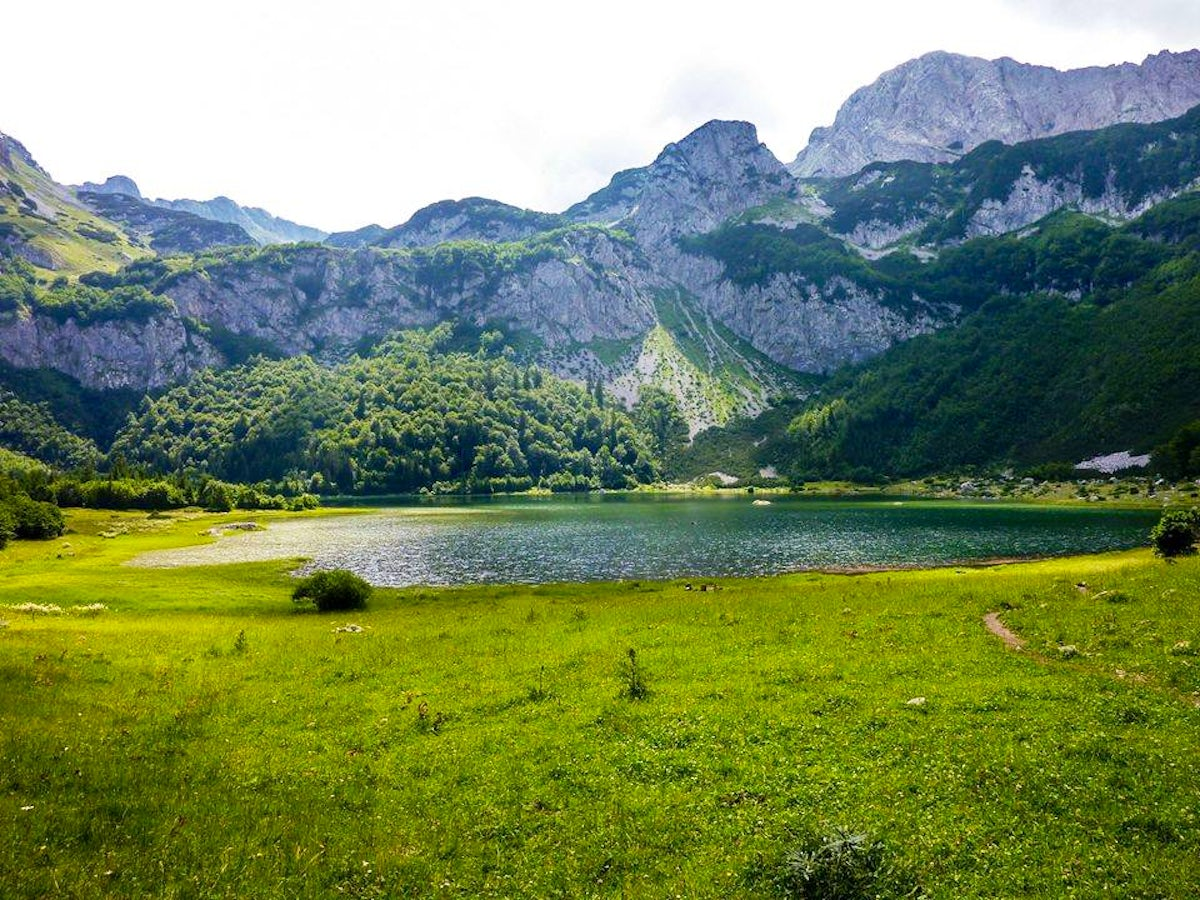 Cover Picture © credits to National Park Sutjeska