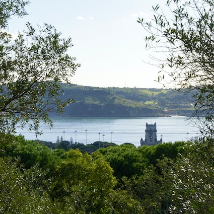 Downhill Belém, a hike through the natural and the urban
