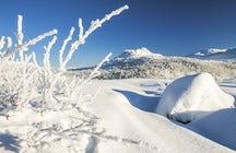 Riksgraensen, el regimen del ski