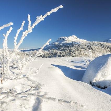 Riksgränsen - das Skiregime