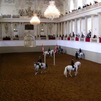 The Ballet of White Stallions: Spanish Riding School Vienna