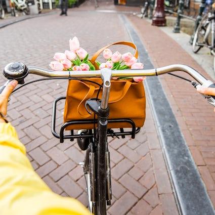 Novi Sad, la capital serbia de las bicicletas
