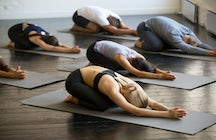 Die Top 5 Yoga Studios Hamburgs