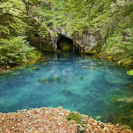 Krupajsko Spring, an exotic wonder in Serbia