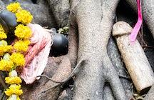 Bizarre Bangkok: spirit shrines