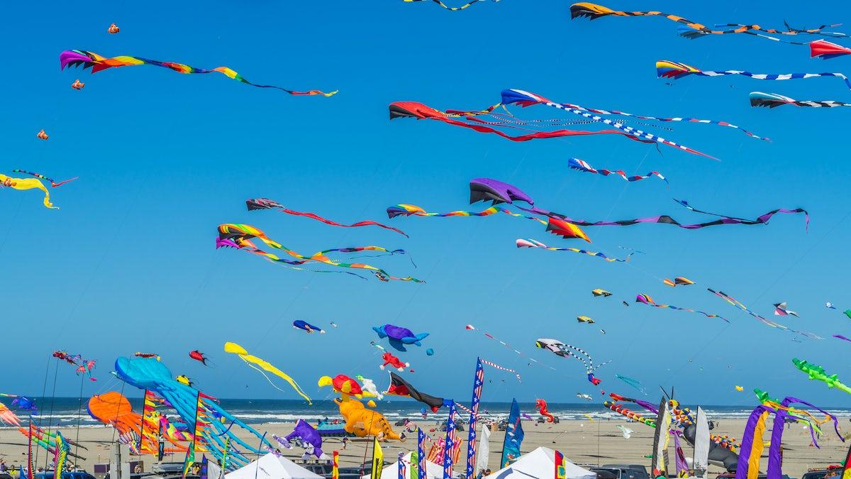 Fun in the sky, Sarıgerme Kite Festival!