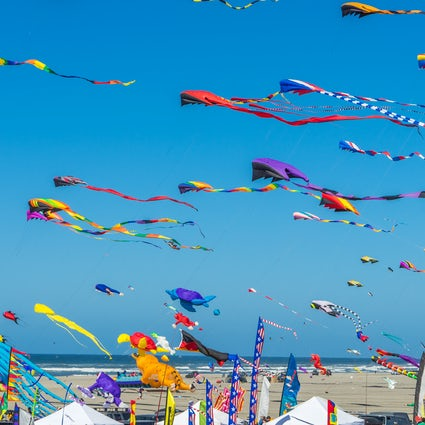 Fun in the sky, Sarıgerme Kite Festival!