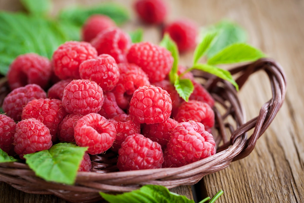 Serbia is the land of raspberries