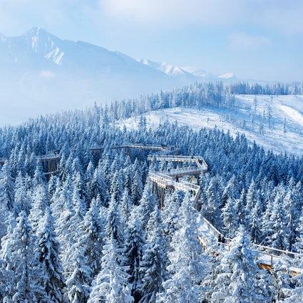 Een wintersprookje in Bachledka