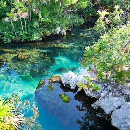 Cenotes: las 3 gemas de agua dulce favoritas en Quintana Roo