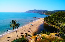 Livin' la Vida Loca en la Playa de Candolim, Goa