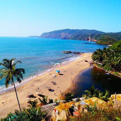 Livin' la Vida Loca at Candolim Beach, Goa