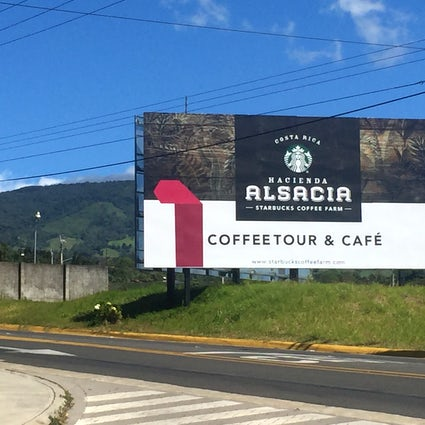 Starbucks Coffee Farm, Alajuela, Costa Rica