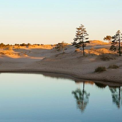 Encontrar dunas en Finlandia en la ciudad de Pori