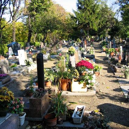 Descubra o mais interessante cemitério parisiense de animais de estimação