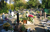 Discover the most interesting Parisian pet cemetery
