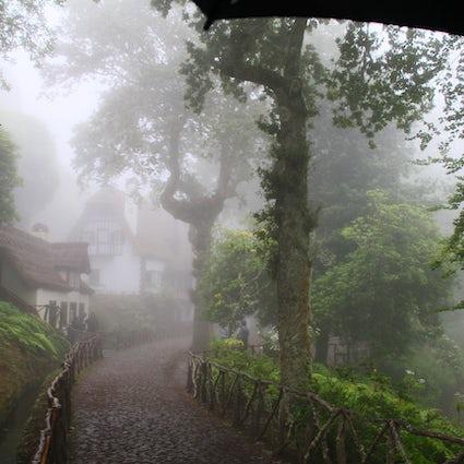 A Trip to Madeira - Queimadas