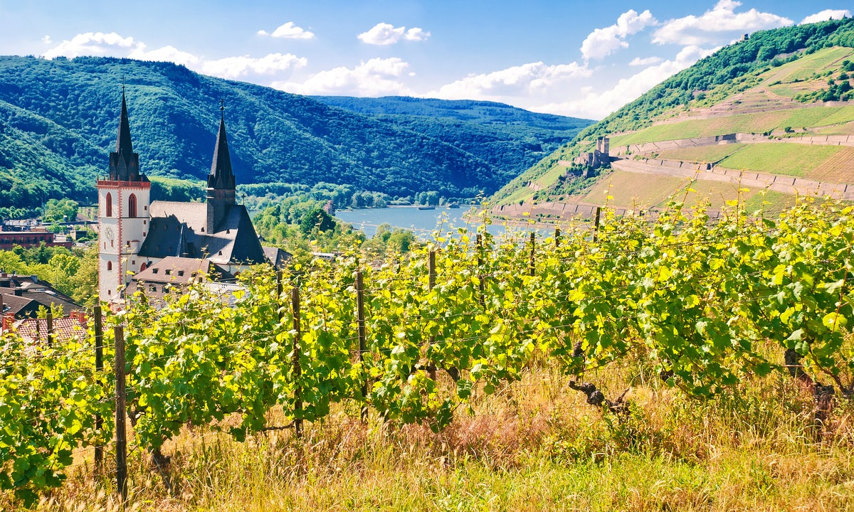 Rüdesheim: The City of Riesling