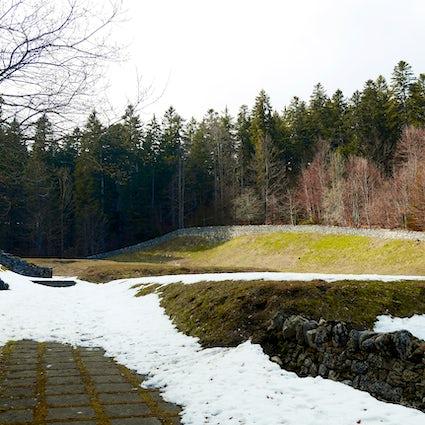 Ruines médiévales dans les bois : la Chartreuse d'Oujon