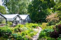 Lernen Sie die Natur kennen: botanischer Garten