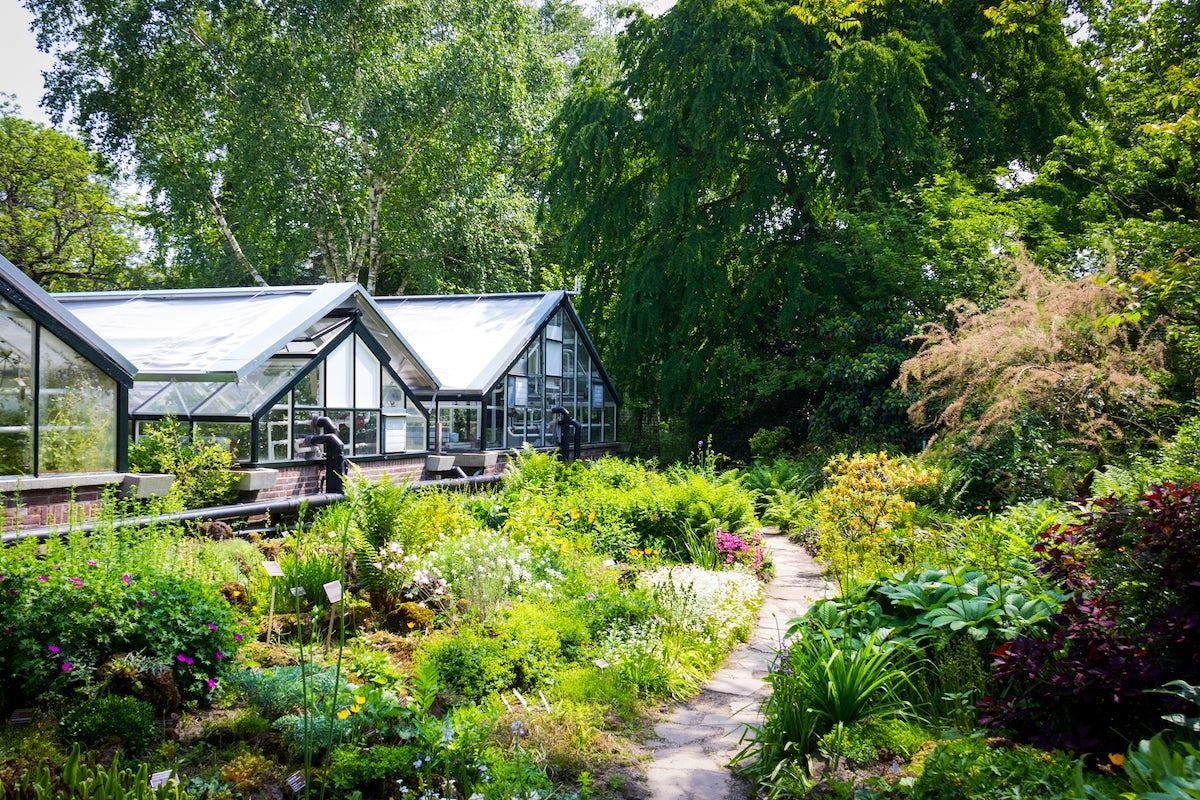 Meet the nature:Botanical Garden