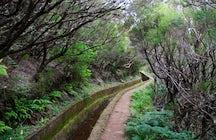 A Trip to Madeira - Levada do Alecrim