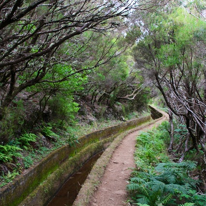 A Trip to Madeira - Levada do Alecrim