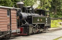 Retrocede en el tiempo con el tren de Mocanița