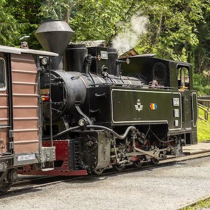 Tornare indietro nel tempo con il treno Mocanița