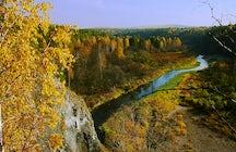 L'automne d'or dans le parc naturel des ruisseaux de cerfs dans l'Oural